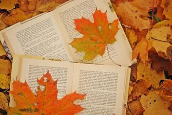 Et si je partais en automne...