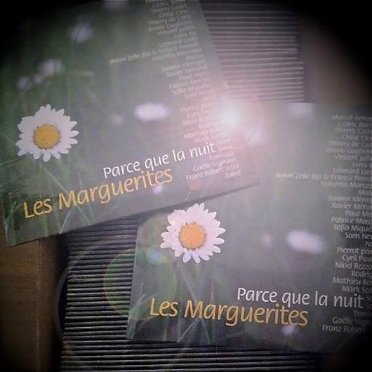 """LES MARGUERITES CONTRE ALZHEIMER SINGLE """" PARCE QUE LA NUIT """" + CLIP"""