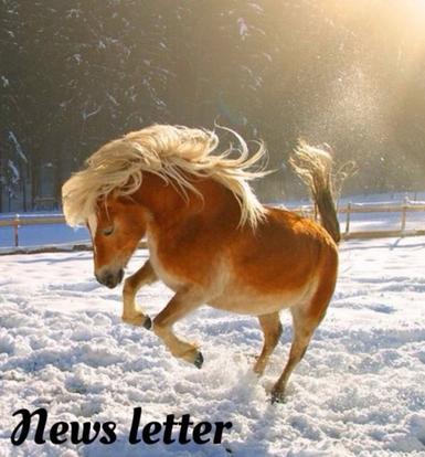 News letter, les cocos !