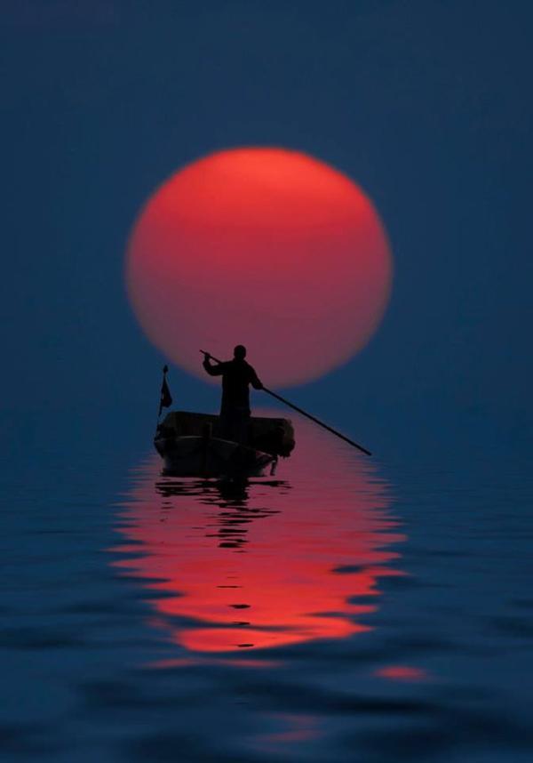 """""""Chercher son bonheur, c'est chercher une île déserte et minuscule dans une petite barque inconfortable munie d'une seule rame. Le malheur, c'est perdre la rame. La sagesse, c'est comprendre que l'île n'existe pas..."""""""