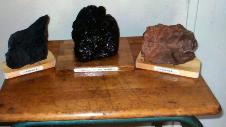 Art 24 : Le charbon