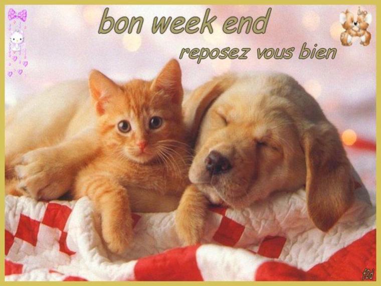 (l) (l) HELLO! MES AMIS(ES) BON WEEK END (l) (l)