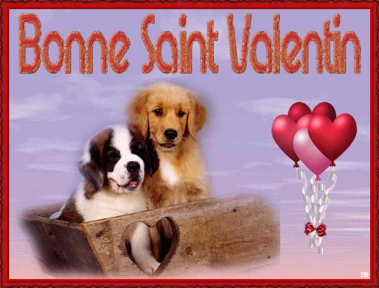 (l) (l) BONNE FETE DE LA SAINT-VALENTIN AUX AMOUREUX (l) (l)