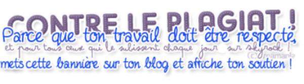 !!!!! Blog protégé!!!!