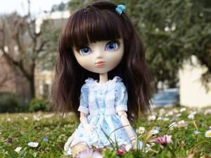 Yonna ~ Vivement le printemps !