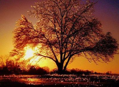 « La nuit et le jour vivent le plus belle amour sans jamais rien voir. »