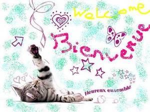 ♥ Bienvenu sur mon blog ♥