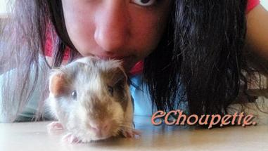 ♥ Welcome to the Choupette's Blog ♥