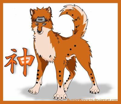 Article spéciale......chien(6ème partie)
