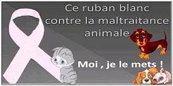 article contre la maltraitance animal!!!