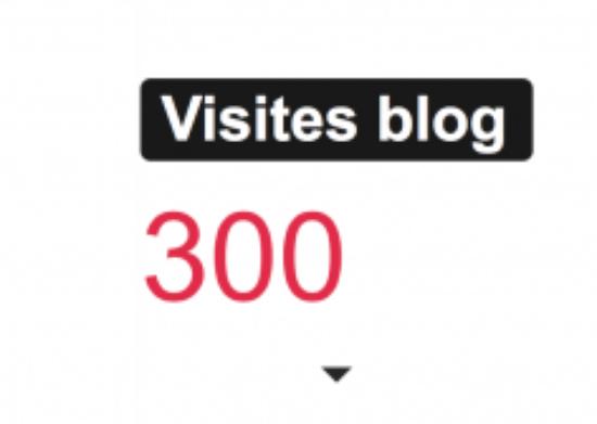 Merci pour les 300 premier visiteurs! Merci beaucoup.