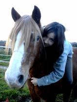 Bienvenue, dans le monde complètement fou de Pauline & Joli-Coeur ! ♥