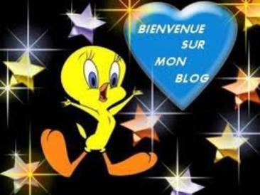 Bienvenue sur mon blog !
