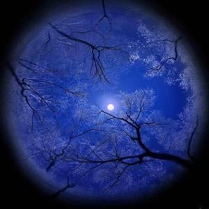 Au coeur de la nuit........... poussière d'étoiles........ Poème C♥eurSénégal22