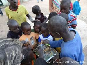 Le Sénégal, c'est aussi cela!! Blackberry Wednesday -- What's Coming to You