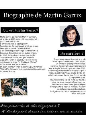 Biographie de Martin Garrix