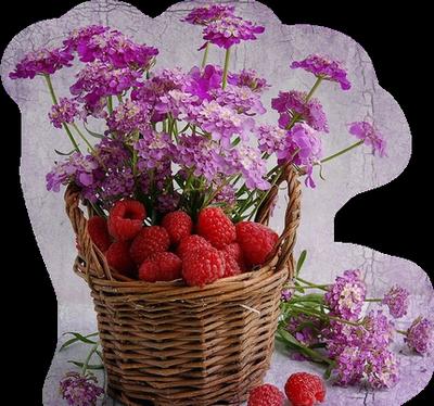 Le vent ne fait pas tomber toutes les fleurs ; le soleil ne mûrit pas tous les fruits.