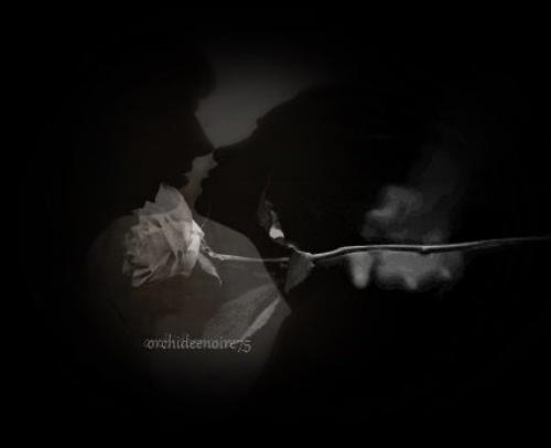 En amour, il y en a toujours un qui souffre et l'autre qui s'ennuie. »