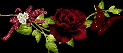 Je vous  souhaite un  très bon dimanche. Que chaque  minute de cettte journée soit un poème, car la poésie embellit toute chose. bisous à tous