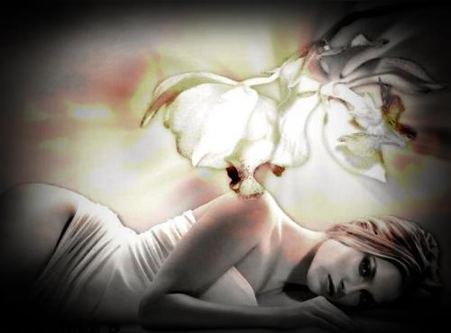 Le bonheur est le parfum de l'âme, l'harmonie du coeur qui chante......