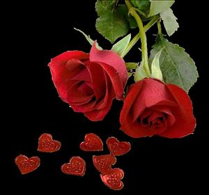 Chaque instant est un cadeau ! Voila pourquoi nous l'appelons le présent ! Bonne journée !