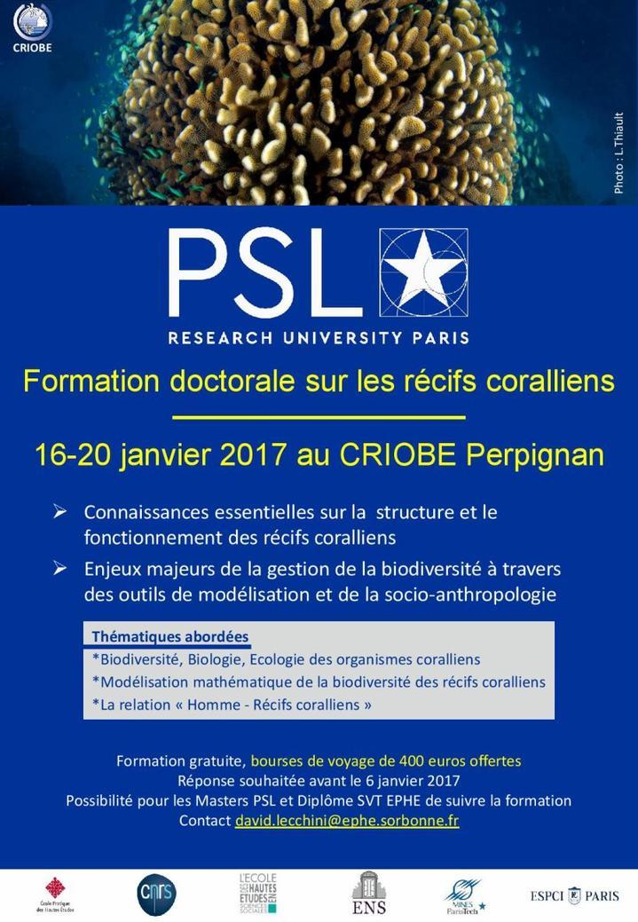 Formation doctorale sur les récifs coralliens