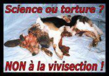 Je suis contre l'abandon et la torture animale !