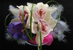 Flores ☾♕