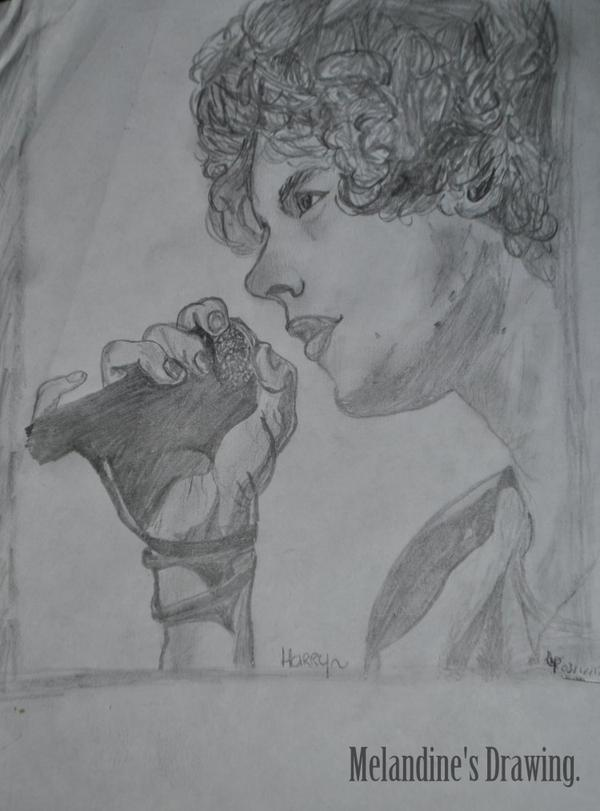 Dessin n°2 : Harry Styles