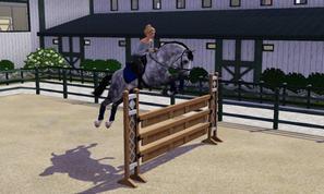 Séance de saut avec Maestro