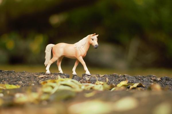 J'aime cette figurine elle ressort bien avec les couleurs de l'automne :p