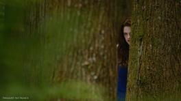 Des Images de Twilight + Le teaser en VF