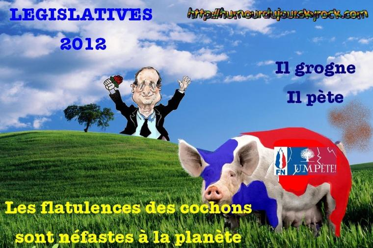 legislatives 2012  / LES COCHONS