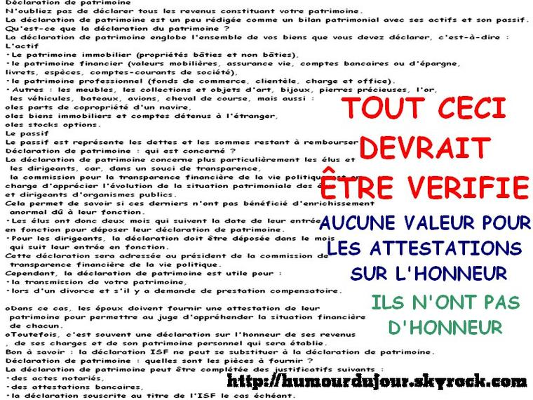 DECLARATION DE PATRIMOINE DES ELUS / LE GRAND MENSONGE