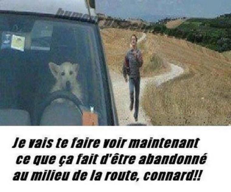 EN VRAC IMAGES D'HUMOUR