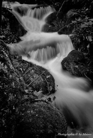 Manon laurent photographie © NIKON D3000 ARTICLE: 96
