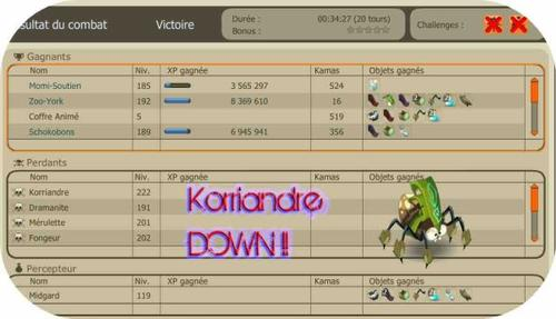 KORRIANDRE DOWN !!