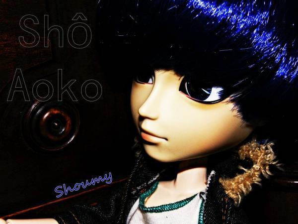 Sho Aoko
