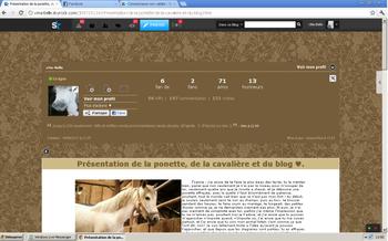 Présentation de la ponette, de la cavalière et du blog ♥.