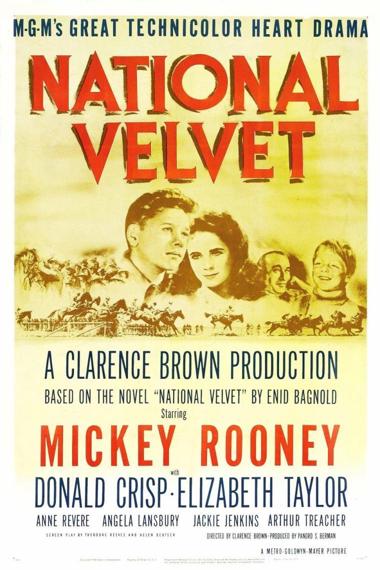 """1944 / La jeune Liz donne la réplique à Mickey ROONEY dans """"Le Grand National"""" (National Velvet), film américain réalisé par Clarence BROWN, sorti en 1944. / SYNOPSIS / Mi TAYLOR arpente les routes de la campagne anglaise lorsqu'il trouve un toit accueillant chez les BROWN. Lorsque la fille cadette de la famille, Velvet, remporte un cheval à la foire du village, elle convainc, appuyée par sa mère, le jeune garçon de l'aider à entraîner Espoir pour participer à un concours prestigieux : le Grand National."""