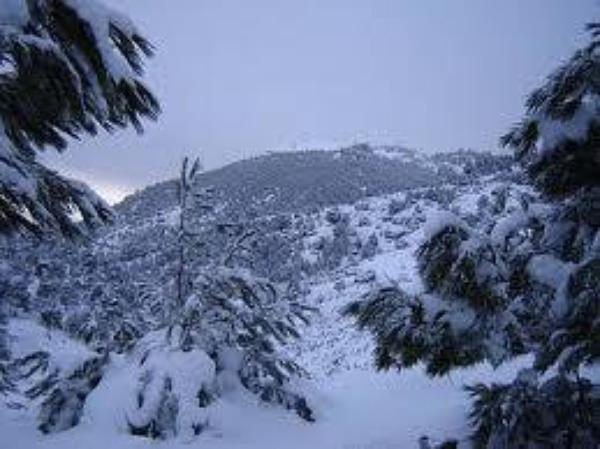 la neige dan la mantagne cé maniéfékkkkkkkkk