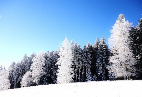 par un beau matin d'hivers