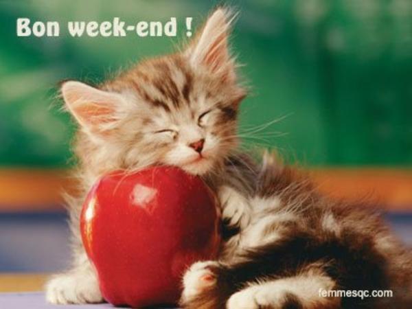 JE VOUS SOUHAITE UN BON WEEK END LES AMIES (IS) ....GROS BISOUX...