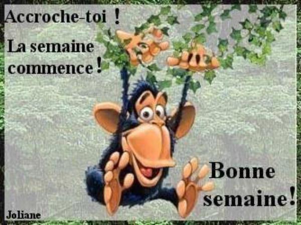 JE VOUS SOUHAITE A TOUTES ET TOUS UNE BONNE JOURNEE !!!!!!.....GROS BISOUX...