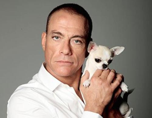 2 soirées spéciales Van Damme ♥