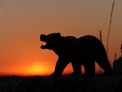""""""" Le soleil se couche tous les soirs, il se lève tous les matins... """""""