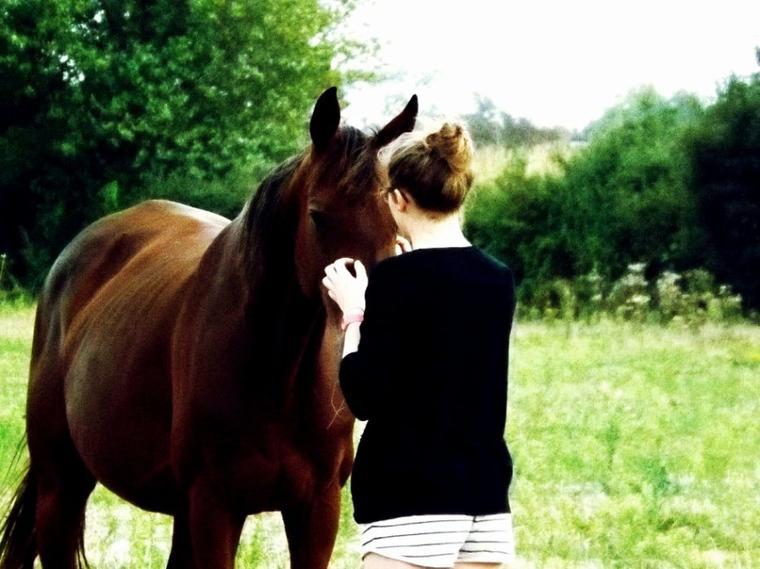 """"""" il n'y a rien de plus intime que les secrets d'un cheval et de son cavalier"""""""