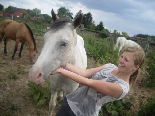 La connaissance du naturel d'un cheval est un des premiers fondements de l'art de le monter, et tout homme de cheval en doit faire sa principale étude.