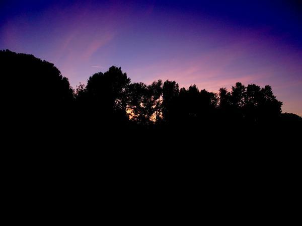 SunLight.....