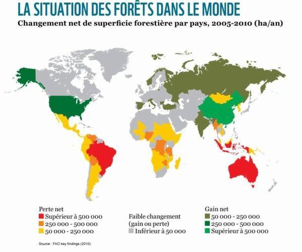 ✿ Protéger les forêts ✿